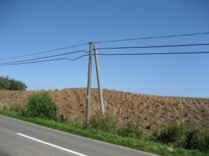 Motivet kunne være dansk, men fotoet er taget på Hokkaido i Japan.